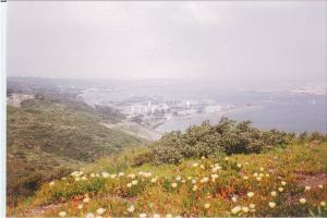 View of some of San Diego from Pt. Loma